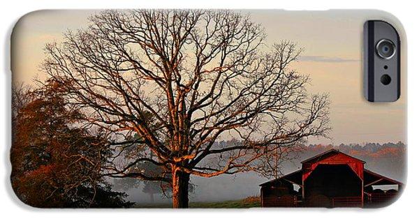 Pastureland iPhone Cases - Sunrise Oak Red Barn Misty Morning iPhone Case by Reid Callaway