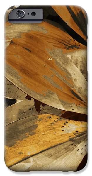 Awed III iPhone Case by Yanni Theodorou