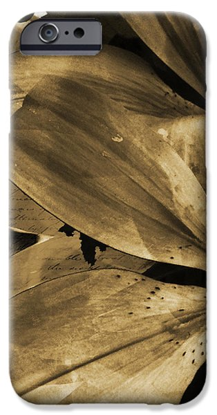 Awed V iPhone Case by Yanni Theodorou