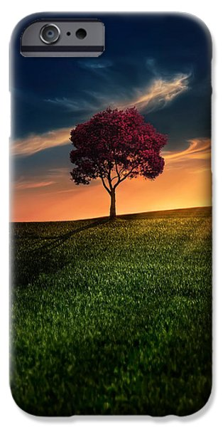 Tree iPhone Cases - Awesome Solitude iPhone Case by Bess Hamiti