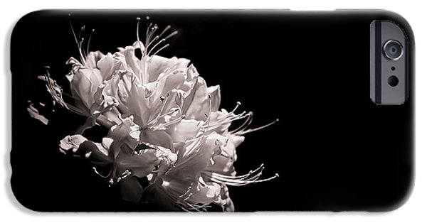 Black And White Florals iPhone Cases - Azalea Black and White Floral  II iPhone Case by Holly Martin