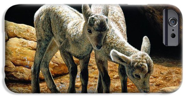 Sheep Paintings iPhone Cases - Baby Bighorns iPhone Case by Crista Forest