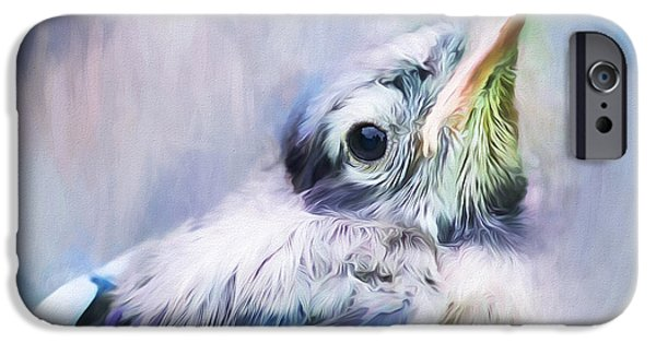 Baby Bird iPhone Cases - Baby Blue Jay iPhone Case by Darren Fisher