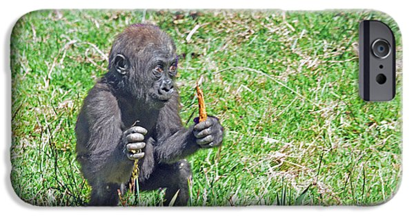 Bonding iPhone Cases - Baby Gorilla Playing Hunter iPhone Case by Jim Fitzpatrick