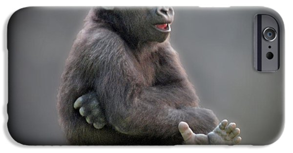 Bonding iPhone Cases - Baby Gorilla Singing to Himself  iPhone Case by Jim Fitzpatrick