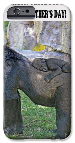 Bonding iPhone Cases - Baby Gorilla sleeping on Mommys Back Mothers Day Version iPhone Case by Jim Fitzpatrick