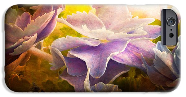 Mural Photographs iPhone Cases - Baby Hydrangeas iPhone Case by Bob Orsillo