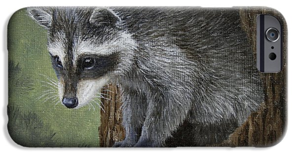 Raccoon iPhone Cases - Baby Raccoon iPhone Case by Crista Forest