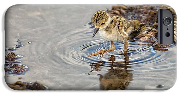 Animals iPhone Cases - Baby Stilt Taking Big Leaps iPhone Case by Andres Leon