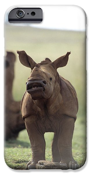 Lips iPhone Cases - Baby White Rhino iPhone Case by Mark Newman