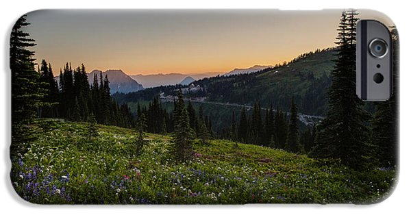 Meadow iPhone Cases - Back to Paradise iPhone Case by Mike Reid