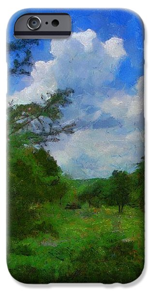 Back Yard View iPhone Case by Jeff Kolker