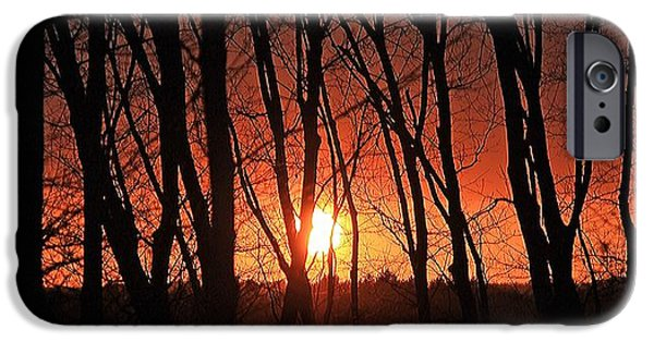 Central Massachusetts iPhone Cases - Backyard Sunset iPhone Case by Michael Saunders