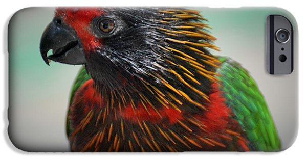 Mangrove Forest iPhone Cases - Bad Ass Lori Portrait  iPhone Case by Don Columbus