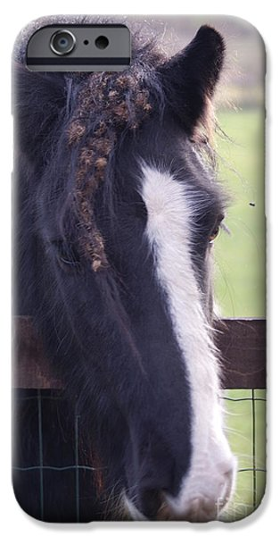 Horse Racing iPhone Cases - Bad Hair Day iPhone Case by Carol Lynch
