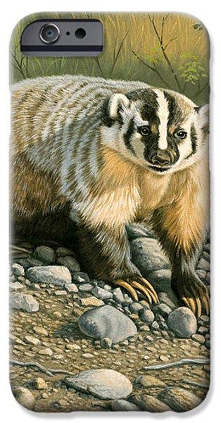 Badger   iPhone Case by Paul Krapf