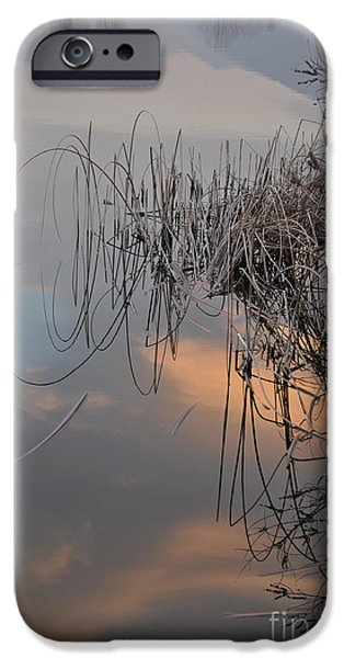 Balance of elements iPhone Case by Simona Ghidini