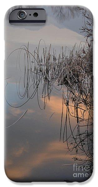 Subtle Colors iPhone Cases - Balance of elements iPhone Case by Simona Ghidini