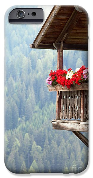 Balcony iPhone Cases - Balcony overlooking the forest iPhone Case by Matteo Colombo