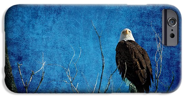 Constitution iPhone Cases - Bald Eagle Blues Into The Night iPhone Case by James BO  Insogna