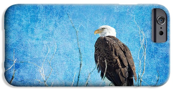 Constitution iPhone Cases - Bald Eagle Blues iPhone Case by James BO  Insogna