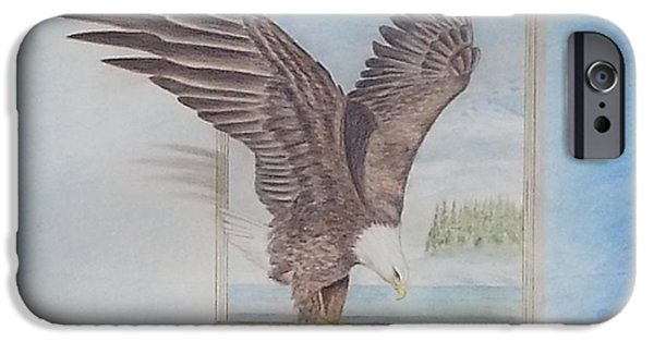 Feed Drawings iPhone Cases - Bald Eagle having lunch iPhone Case by Parmjit Gill