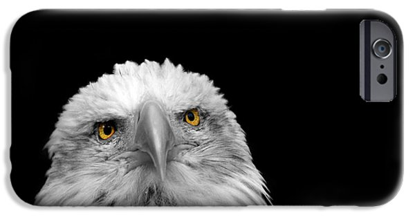 Eagle Photographs iPhone Cases - Bald Eagle iPhone Case by Mark Rogan