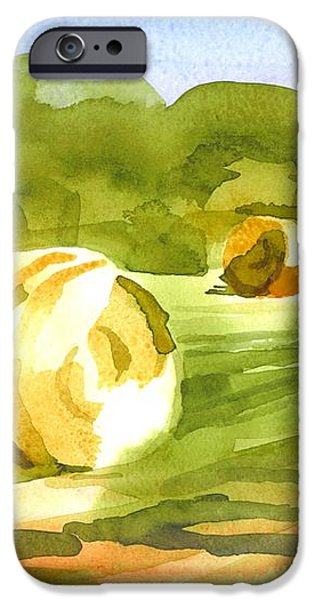 Bales in the Morning Sun iPhone Case by Kip DeVore