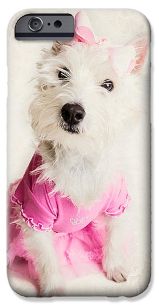 Ballet Dancers Photographs iPhone Cases - Ballerina Dog iPhone Case by Edward Fielding