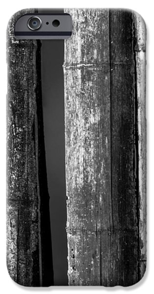 Trio Photographs iPhone Cases - Bamboo Abstract iPhone Case by Wim Lanclus