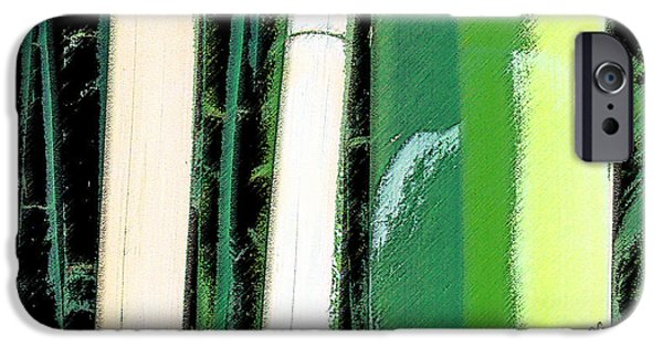 Emerald Green iPhone Cases - Bamboo Abstraction iPhone Case by Ben and Raisa Gertsberg