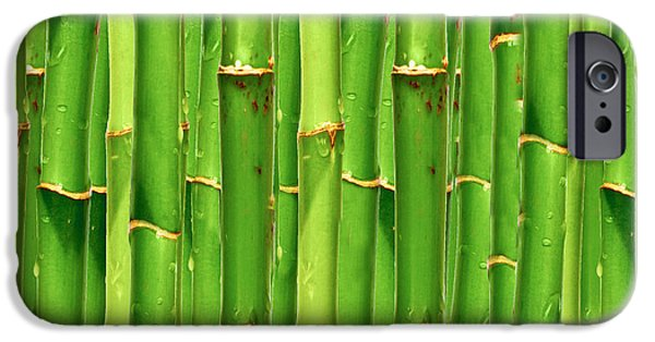 Bamboo Fence iPhone Cases - Bamboo background  iPhone Case by Aleksandar Mijatovic