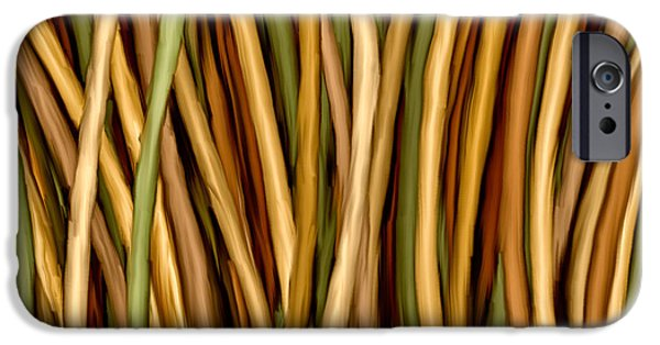 Hattiesburg iPhone Cases - Bamboo Canes iPhone Case by Brenda Bryant