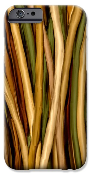 Bamboo Canes iPhone Case by Brenda Bryant