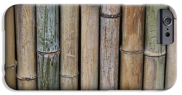 Bamboo Fence iPhone Cases - Bamboo Fence iPhone Case by Tilen Hrovatic
