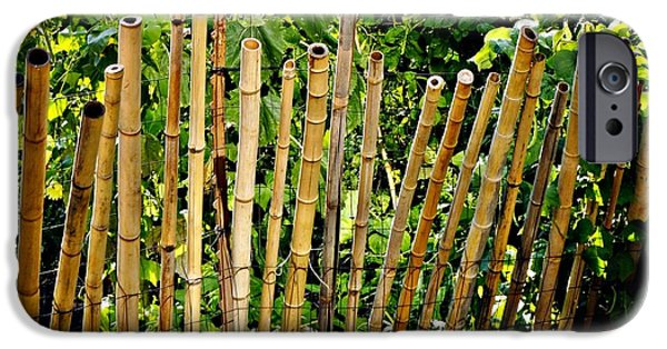 Bamboo Fence iPhone Cases - Bamboo Fencing iPhone Case by Lilliana Mendez