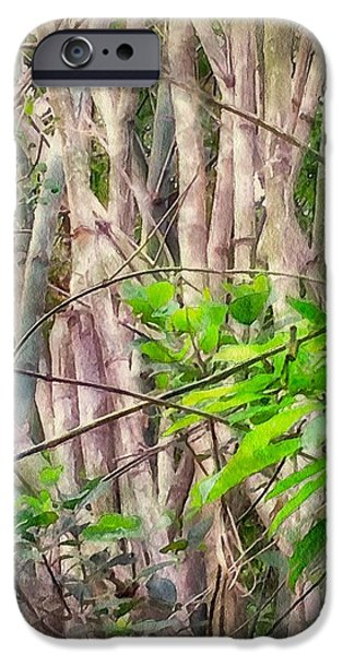Bamboo House iPhone Cases - Bamboo forest at Lamma island Hong Kong iPhone Case by Yury Malkov