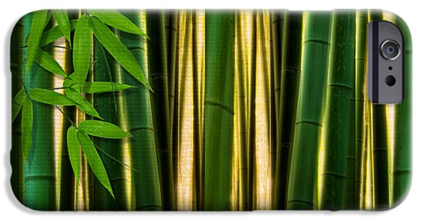 Bamboo Leaves iPhone Cases - Bamboo Forest- Bamboo Artwork iPhone Case by Lourry Legarde