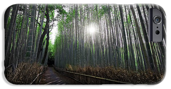 Bamboo Fence iPhone Cases - BAMBOO FOREST PATH of KYOTO iPhone Case by Daniel Hagerman