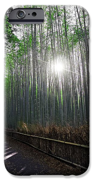 BAMBOO FOREST PATH of KYOTO iPhone Case by Daniel Hagerman