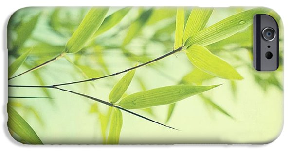 Leaves iPhone Cases - Bamboo In The Sun iPhone Case by Priska Wettstein