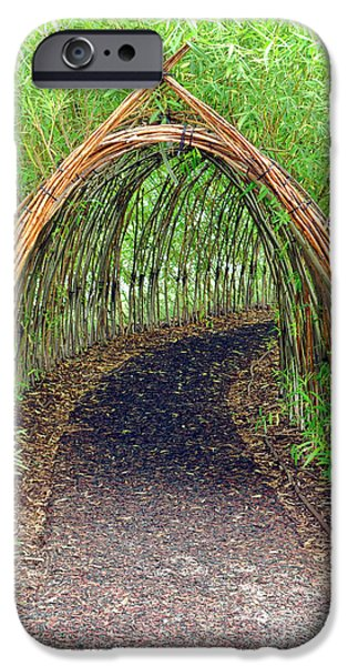 Pathway iPhone Cases - Bamboo Tunnel iPhone Case by Olivier Le Queinec