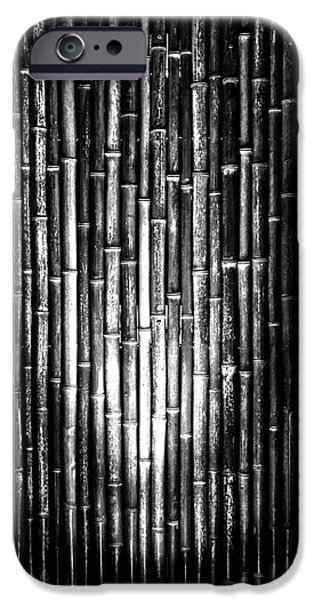 Bamboo Fence iPhone Cases - Bamboozled iPhone Case by James Aiken