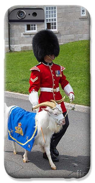 Regiment iPhone Cases - Baptiste the Goat iPhone Case by Edward Fielding