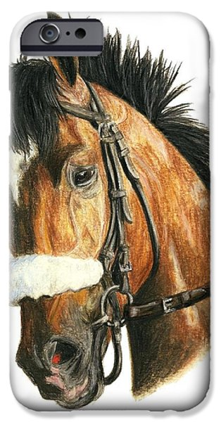 Barbaro iPhone Case by Pat DeLong
