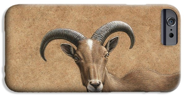 Mammal Drawings iPhone Cases - Barbary Ram iPhone Case by James W Johnson