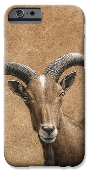 Barbary Ram iPhone Case by James W Johnson