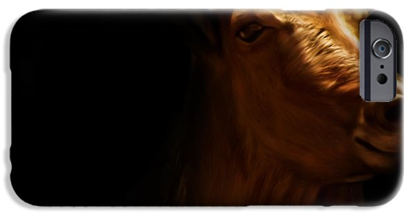 Wild Animals iPhone Cases - Barbary Sheep Portrait iPhone Case by Lourry Legarde