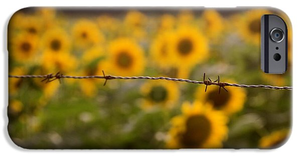 Buttonwood Farm iPhone Cases - Barbed iPhone Case by Dorothy Drobney