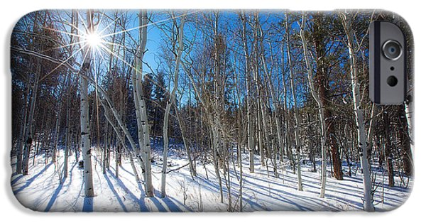Winter iPhone Cases - Bare Aspens iPhone Case by Darren  White